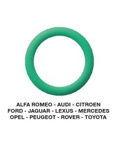 O-Ring Alfa-Audi-Citroen-Jaguar-Opel-etc. 20.40 x 3.50  (25 st.)