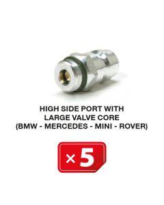 Nippel Hogedruk zijde met lang ventiel (BMW-Mercedes-Mini-Rover) (5 st.)