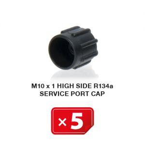 Airco Service Poort Kapje M 10 x 1 Hogedruk zijde R134a (5 st.)